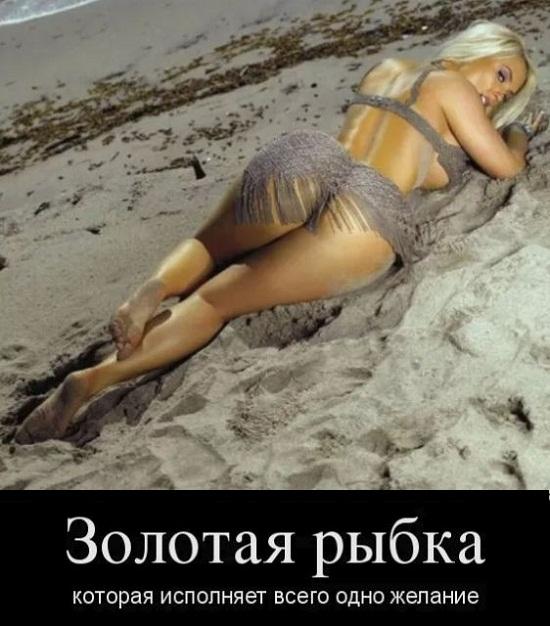 Фото приколы смешные до слез очень новые с надписями про девушек, корги доброе
