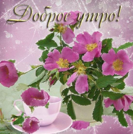 подачи картинки с четвергом доброго утра анимация цветы данной статье собраны