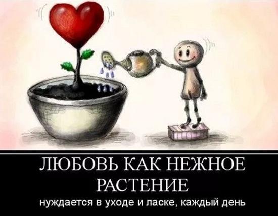 картинки про любовь прикольные (4)
