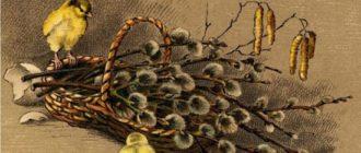 otkrytki verbnoe voskresene (10)
