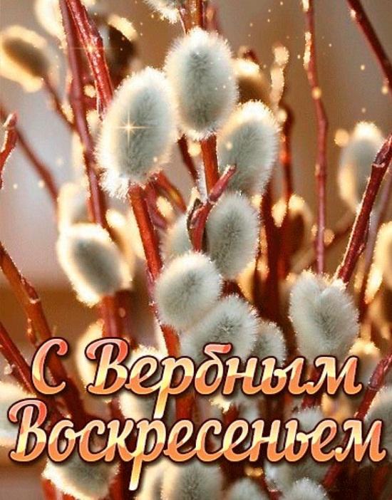 otkrytki verbnoe voskresene (19)