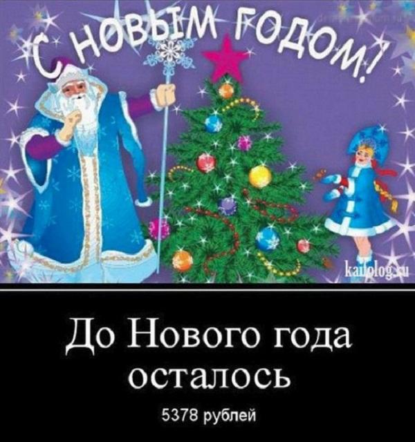 картинки про новый год смешные с надписями (6)