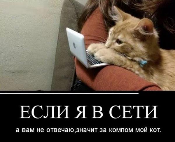 смешные картинки с надписями до слез (7)