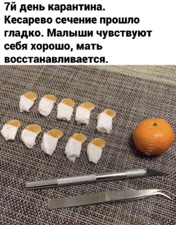 ржачный анекдот про карантин кк