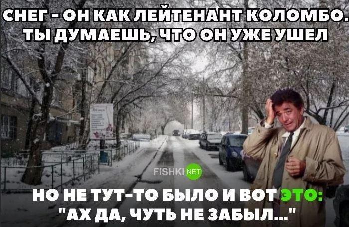юмористические рассказы короткие КК